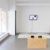 Aporia Elephanti, installation, video, dimension variable